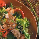 VegetarianProtein